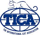 Kaisar's Katz Abyssinian's in Atlanta, GA is registered with TICA.
